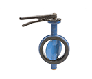 Butterfly Valve - Lever